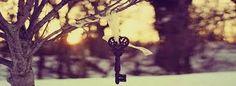 Imagini pentru poze frumoase pentru coperta facebook
