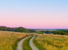 Дорога к речке - Извилистая полевая дорога на холме с полевыми травами ведет к речке