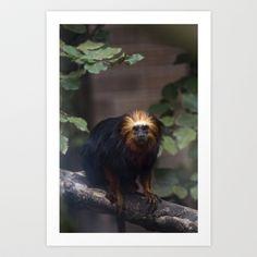 Monkey #1 Art Print by Jinzha Bloodrose - $15.60