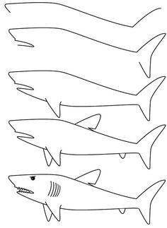 描くステップバイ ステップどのようにシンプルなステップバイ ステップの手順でサメを描画する方法を学ぶ 3868   漫画の描き方