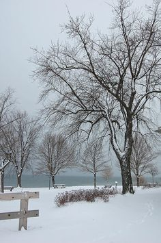 January Skies By Colleen English Winter Colors, Winter White, January, English, Sky, Wall Art, Outdoor, Heaven, Outdoors