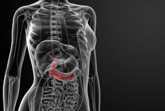 identifying the molecular starting point when certain cells in the pancreas become pre-cancerous lesions, researchers behind a new study believe they have opened the door to exploring ways to prevent the deadly disease.