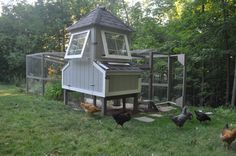 Our very first chicken coop