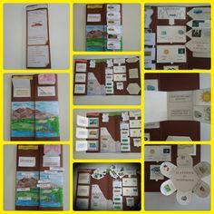 Montessori, Colegio Ideas, Special Needs Teacher, D Book, Folder Games, Mini Books, Lap Books, Interactive Notebooks, Book Crafts