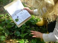 herbology Make a Herbarium.a small book for kids to make to remind them what the plants growing around them are and what they are used for. Nature Activities, Activities For Kids, Teaching Kids, Kids Learning, Learning Spanish, How To Teach Kids, How To Make, Plant Identification, Outdoor Learning