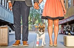 California Love Engagement Photos on a Train:  How adorable is their puppy, Stanley M. Hopland?! (Who gets his last name from the city Des + Ron are getting married in, Hopland, CA!) Stanley hurt his paw at doggy daycare the day before their shoot, so the vet cleaned him up + gave him the sweetest pink cast! Poor little guy, but he was a trooper + we think he looks pretty great!