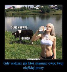Gdy widzisz jak ktoś marnuje owoc twej ciężkiej pracy – SERIO KURWA? SERIO? Wtf Funny, Funny Memes, Jokes, Text Memes, Good Mood, Nice View, Cringe, Animals And Pets, Clever