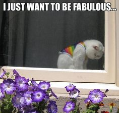 He just wanted to be fabulous.