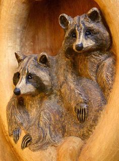 2 raccoon. this would be pretty out of the burned walnut