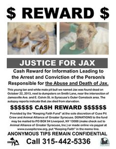 Dog starved to death and dumped by dumpsters, reward offered for information