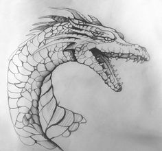 drago study