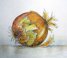 ONION SKETCH...I painted this with Ink & Watercolor.