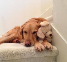 cuddling with my favourite soft toy!