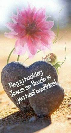 Good Morning Wishes, Day Wishes, Good Morning Quotes, Grief Dad, Bible Guide, Spiritual Inspiration Quotes, Evening Greetings, Afrikaanse Quotes, Goeie More