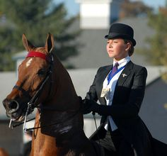 Saddleseat Rider. What a classy pair. Demonstration at the Equine Village of the Saddle Seat Equitation World Cup. www.saddleseatworldcupusa.com/