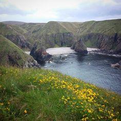 My weekend adventuring. Love finding hidden gems..#exploreratheart #portskerra #caithness #scotland www.havenhouseart.com