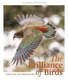 Cover image for The brilliance of birds : a New Zealand birdventure Science Writing, Marine Ecosystem, Environmental Change, Any Birds, The Great Outdoors, New Zealand, Behind The Scenes, Enabling, Body Weight