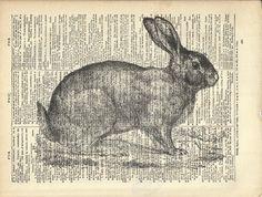 Bunny Rabbit Art Print On Vintage Dictionary Book Page. $10.00, via Etsy.