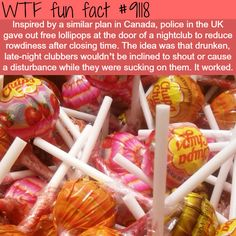 WTF Fun Facts is updated daily with interesting & funny random facts. We post about health, celebs/people, places, animals, history information and much more. New facts all day - every day! Creepy Facts, Funny Facts, Funny Memes, Random Facts, Random Stuff, Hilarious, Funny Cops, Funny Stuff, Random Meme