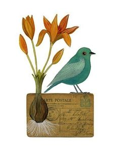 bird on postcard