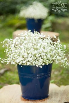 Navy buckets with white baby's breath for aisle decoration. Add a yellow ribbon and it would be perfect.
