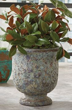 With a distinct texture and unique coloring, these distinctive planters add lava-like character to outdoor spaces. Smooth terracotta on the inside, variegated green and terracotta outside, the Delaney Planters make a statement whether indoors or out.