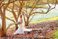 Mackay Regional Botanic Gardens ~ Photo by Sue Considine Photographics