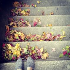 #stairs #leaves #fall