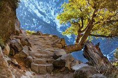 Yosemite California, Nature, Travel, Viajes, Naturaleza, Destinations, Traveling, Trips, Scenery