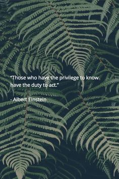 """✪ """"Those who have the privilege to know have the duty to act."""" ~Albert Einstein…"""