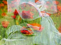 'Wedding' von Gabi Hampe bei artflakes.com als Poster oder Kunstdruck $18.02