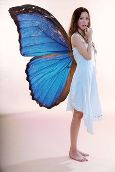 Fairy, this would be an awesome halloween costume! I love how this fairy has butterfly wings!