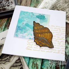 Karten-Kunst » Meeres-Schnecke