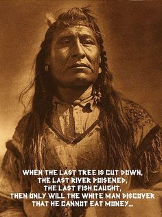When the last tree is cut down, the last river poisoned, the last fish caught, only then will the white man discover that he cannot eat money.