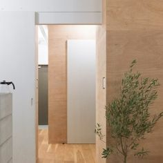 Domino+Architects+divides+J+House+with+wooden+storage+partitions