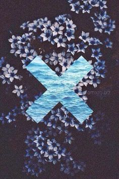 ed sheeran, flowers, hipster, love, wallpaper, x - image #2189820 by LADY.D on Favim.com