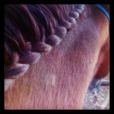 im definitely going to braid my horses mane now;