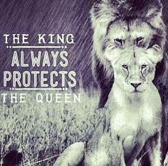 My king always protects me, even when I don't need it.  That just makea me love him even more!!!