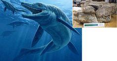 """Cientistas descobriram um animal que seria o primeiro monstro dos mares (concepção artística): um réptil com 8,6 metros de comprimento, com um grande crânio (na imagem pequena) e dentes de tubarão, que viveu há 244 milhões de anos. A criatura, descrita na revista """"Proceedings of the National Academy of Sciences"""", era um tipo de ictiossauro, mas, diferentemente dos outros que comiam peixes, ele se alimentava de grandes presas, incluindo outros ictiossauros."""