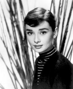 Beautiful Audrey Hepburn – Happy new year 2013 !   DVDbash
