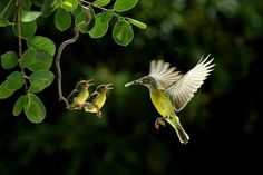 Love by CK NG on 500px