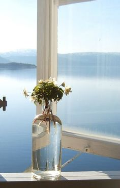 A Norwegian summer morning. Photo by Tante Monica.