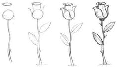 DIY Drawing a rose