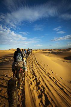 Desert Caravan - Morocco