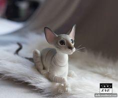 Extreme Oriental Male   by BJD Pets (dolls.evethecat.com)