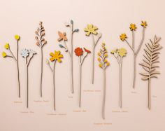 Wooden meadow flower stems available individually for you to create your own bespoke sets.  Choose from Tansy, Campion, Cornflower & Buttercup - beautiful displayed on their own or as part of a group.  Laser cut from Birch plywood and hand-finished in pretty, bright colours.  Sizes: Tansy - 30cm, Buttercup - 29cm, Campion - 27cm, Cornflower - 28cm All are 6mm thick and painted on both sides.  Please note: Stems of Foxglove, Daisy & Fern are also available to purchase individually in a…