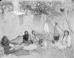 An Indian woman and two girls sitting inside an enclosure cooking. Crow??? Date Original: 1902-1933. Richard Throssel Collection, American Heritage Center, University of Wyoming.
