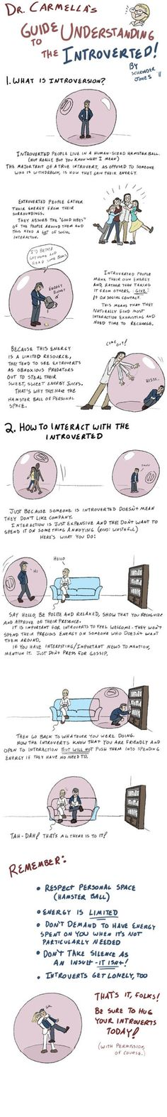 This is brilliant! How to Live with Introverts by =SchroJones on deviantART