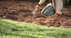 To get a handle on weeds, the gardener's best defense is a good offense. Build up a healthy lawn and garden beds, cultivate good gardening habits, and weeds will become less of a problem over time. Click through to The Home Depot's Garden Club to learn more.