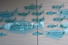 Vancouver Aquarium Donor Wall